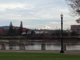 View of the Williamette River and Mount Hood from Downtown Portland OR